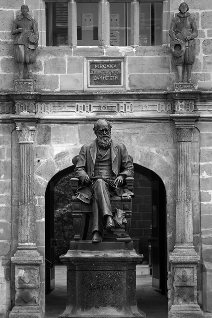 Darwin Library, Shrewsbury