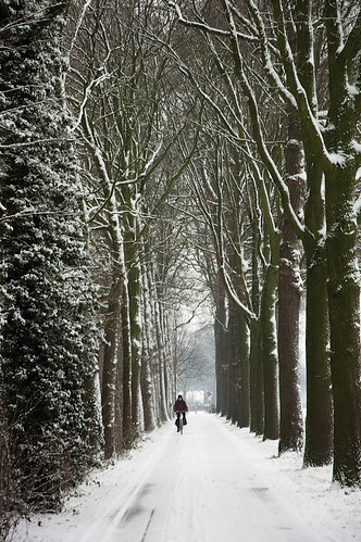 Winter in Holland II