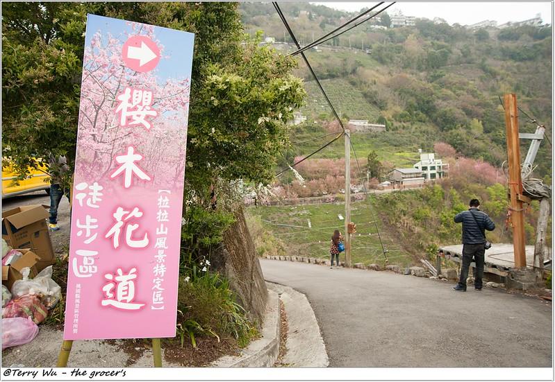 2014-3-01 拉拉山櫻花