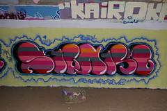 Swarm 2009