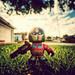 Optimus Prime by isayx3