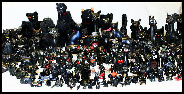 My black cat collection... full line-up!!