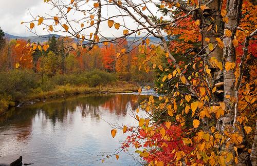autumn fall water rain franklin dallas stream maine newengland