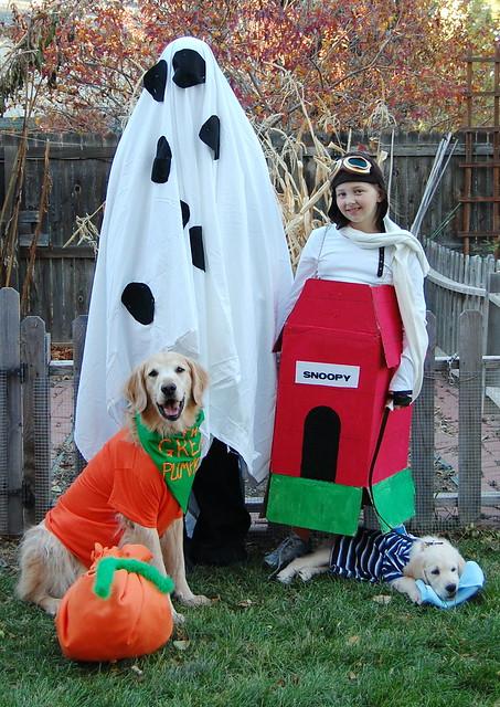 Linus Halloween Costume