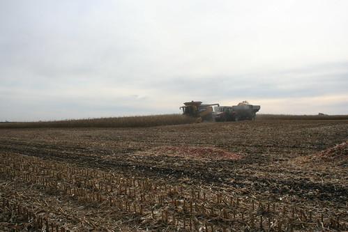 corn energy harvest iowa poet biomass biofuels ethanol cellulose cobs emmetsburg