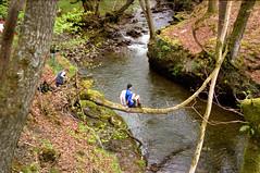 As easy as falling of a log
