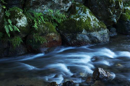 聖流 鵜の瀬