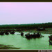 Fishermen's paradise - Ratnagiri by Ruhi, the clicker