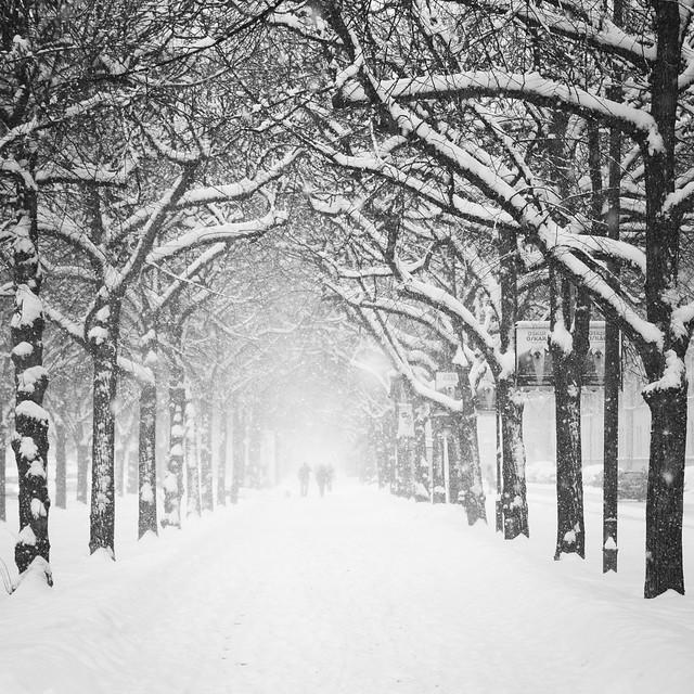 Winter, Strandvägen