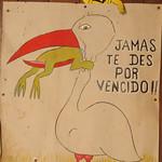 Leon, Nicaragua: Frog Eating Bird?