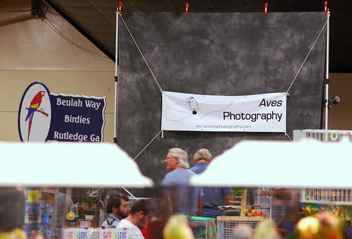 events birdfair