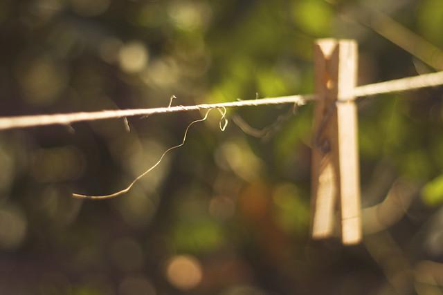 clothesline twine