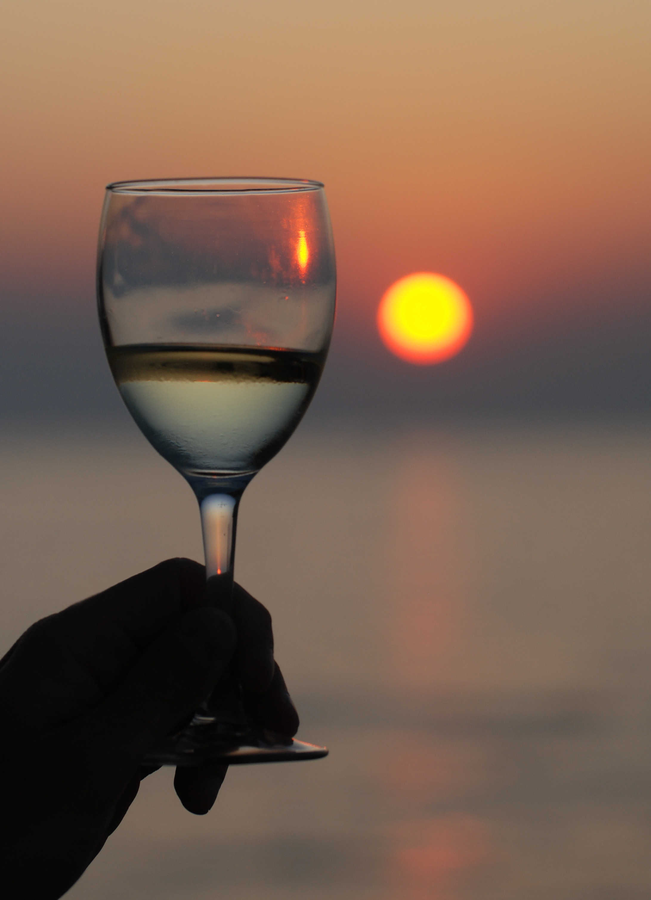 September Wine Tastings