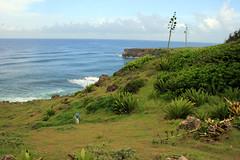 Geocaching in Barbados