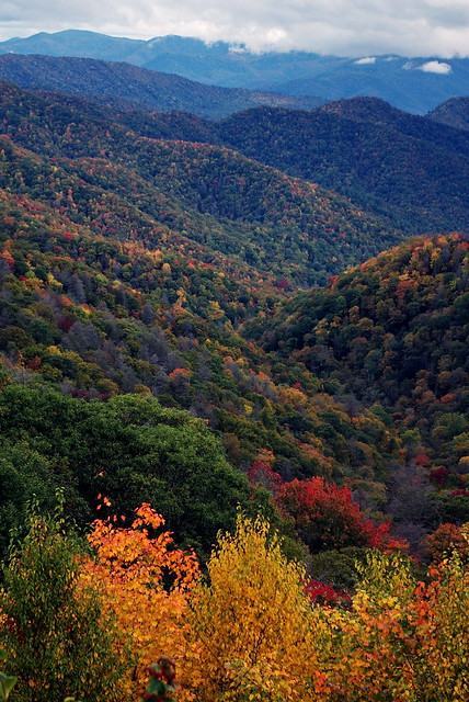 """The Great Smoky Mountains National Park"""