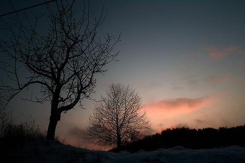 schnee snow schweiz sigma portfolio franken reipertsgesee fränkische fränkischeschweiz dp1 betzenstein sigmadp1