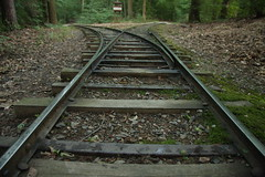Tracks Cover Photo