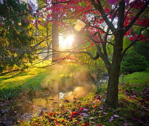 fall colors sunrise landscape university indiana iu d90 18105mm alemdagqualityonlyclub