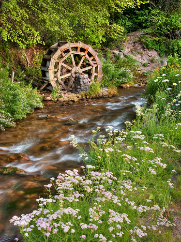 old mill nature water wheel creek landscape utah stream rustic scenic peaceful canyon saltlakecity abandon millcreek millcreekcanyon