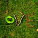 Love! by Éktor