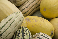 cantaloupe(0.0), carving(0.0), plant(0.0), vegetable(1.0), honeydew(1.0), yellow(1.0), calabaza(1.0), produce(1.0), fruit(1.0), food(1.0), winter squash(1.0), close-up(1.0), muskmelon(1.0), melon(1.0), cucurbita(1.0), gourd(1.0),