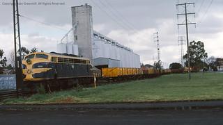 B69 North Fitzroy