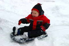snow angel(0.0), tubing(0.0), winter sport(1.0), winter(1.0), snow(1.0), sledding(1.0), sled(1.0),