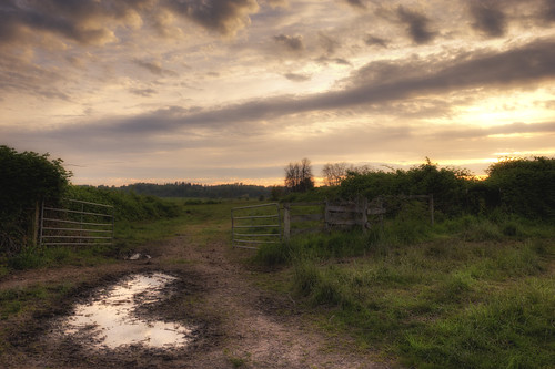 sunrise farmland vancouverlake