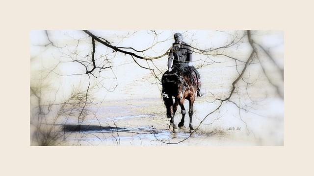 """""""L'humanité est comme un paysan ivre à cheval : quand on la relève d'un côté, elle tombe de l'autre."""" Martin Luther"""