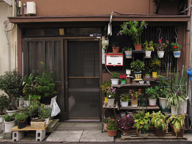 the Tokyo Potted Gardens 352