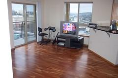 a proper living room 001