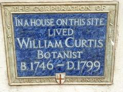 Photo of William Curtis blue plaque