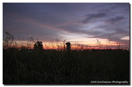 field sunrise dawn