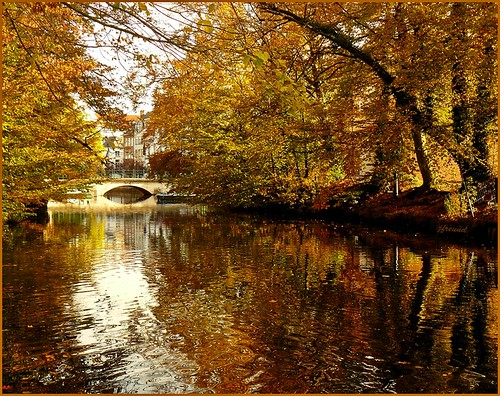 Golden river Nete