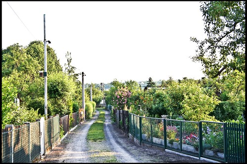 Gartensparte
