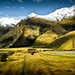 New Zealand Landscape by Momento Creative