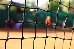 Manual de capacitación en la iniciación deportiva del tenis de campo