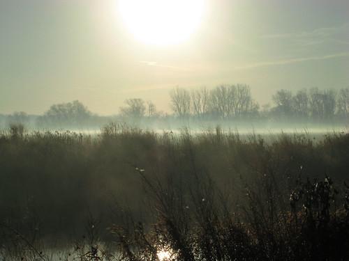county city urban mist lake chicago robert fog digital sunrise canon over cook powershot il whitney wetland g9 lakemoor robertwhitney robertpwhitney 20121014v 20130725 20131017 20140723