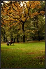 el capricho, otoño