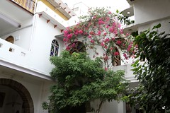 bundi hotels haveli braj bhushanjee