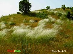 Kurdistan mountain, nature,landscape