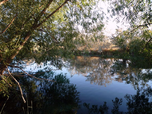 reflection pond idaho nampa wilsonsprings wilsonponds trophypond