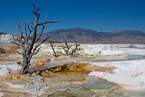 Where Geologic Time Flies