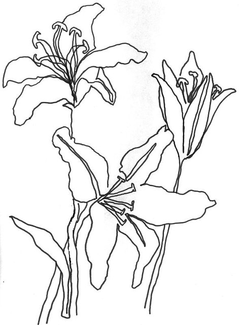 Simple Continuous Line Art : Flower doodles jppyro