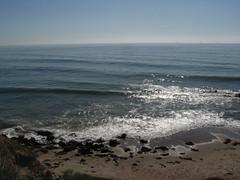 Carpinteria Bluffs, California (7)