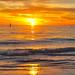 Siesta Beach 2009
