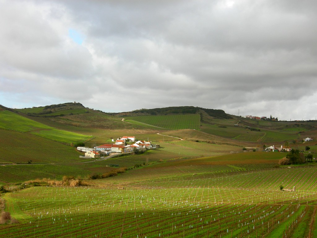 L aire de paysage prot g de la serra de montejunto le for La serra progetta le planimetrie
