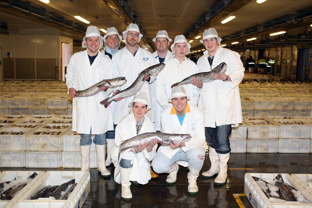 Young scottish seafood chef of the year finalists visit pe for Chinese fish market near me