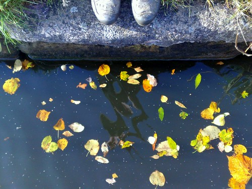 Autumn Canal Shoes