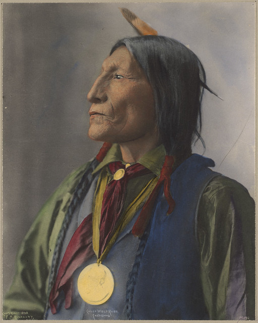 indian chief and wolf - photo #13